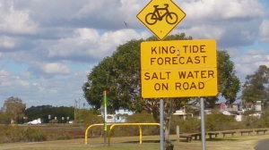 Salt Water on Road
